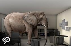 blog_elephant_waiting_room