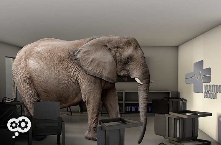 blog_elephant_waiting_room