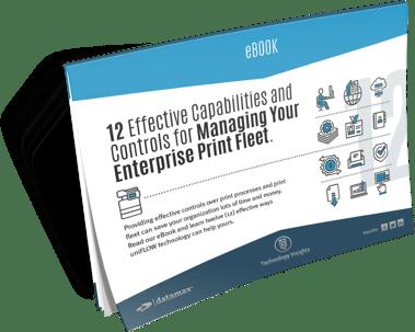ebook_effective_capabilities_controls.png